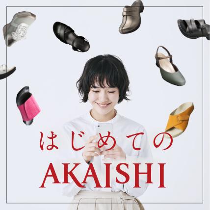 はじめてのAKAISHI