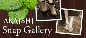AKAISHI Snap Gallery